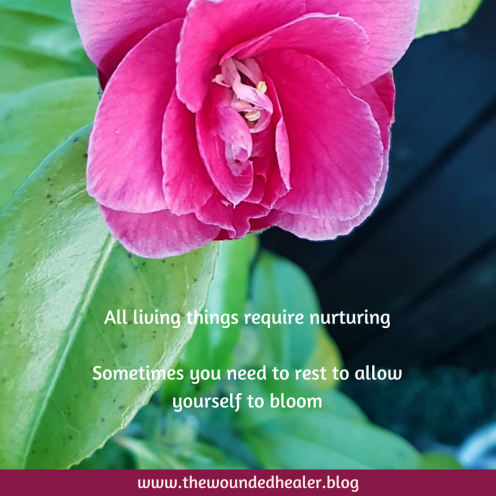 All living things require nurturing
